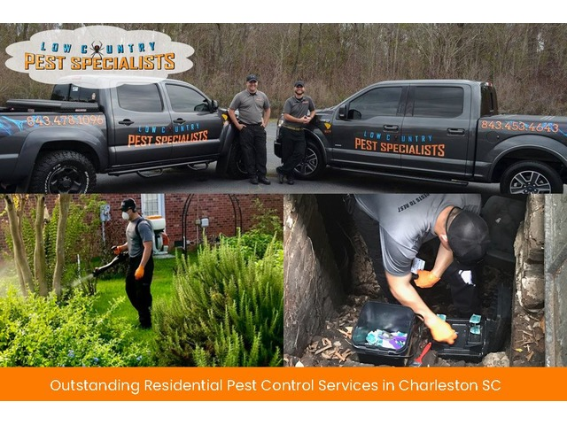Chief Residential Pest Control Services | free-classifieds-usa.com