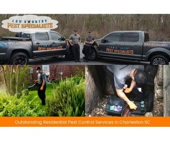 Chief Residential Pest Control Services