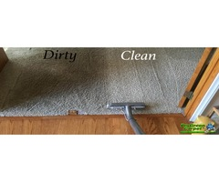 Progreen Carpet cleaning services in Durham