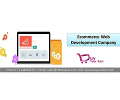 Ecommerce Development Services USA