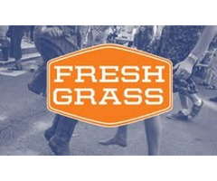 Best Summer Music Festivals - FreshGrass