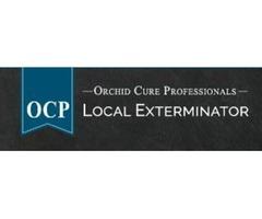 OCP Bed Bug Exterminator San Francisco CA - Bed Bug Removal
