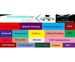 Enhance Your Career With Mulesoft Training From SV Trainings Experts