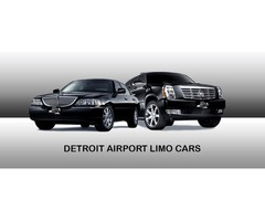 DTW Metro Airport Transportation Service