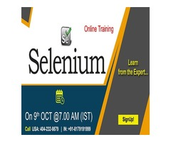 Selenium Online Training in USA - NareshIT