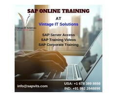 SAP Online Training with Server Access Facility