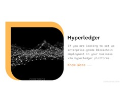 Hyperledger Blockchain Development Company | Hyperledger Developer | Codezeros
