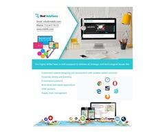 Freelance Web Designer. Freelance Web Developer