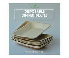Halloween party Dinner Plates