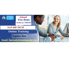 Best SAP HR/HCM Online Training In USA