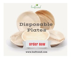 Disposable Dinnerware Plate