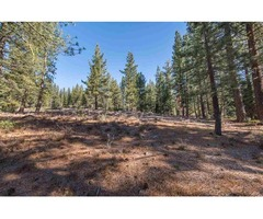 Mountain lifestyle-11777 China Camp Rd Truckee CA 96161