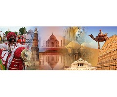 Best Tour Operators in India