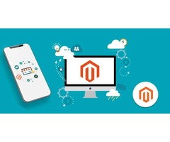 Hire Our Robust Team of Zealous Magento Developers!