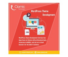 An extraordinary theme is the base of a popular website