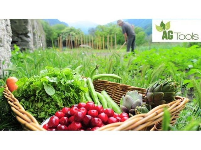 Farm management software services | free-classifieds-usa.com
