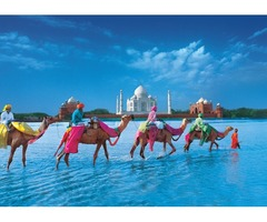 India Travel Packages Book