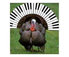 Quad Cities Thanksgiving - Please Remember to Get Your Piano Tuned!