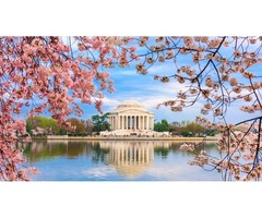 Washington D.C. Itinerary: 3-Day and 1-Day Options