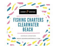 Fishing charters clearwater beach