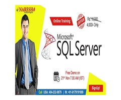 Best SQL Server Online Training in USA - NareshIT