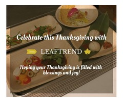 Thanksgiving Day Bulk Deals on Natural Dinnerware