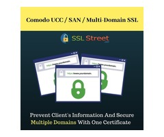 Secure Up To 100 Domains With Comodo UCC/Multidomain SSL
