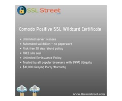 Save Your Time & Money With Comodo Positive SSL Wildcard