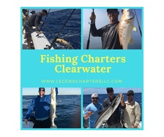 Fishing Charters Clearwater