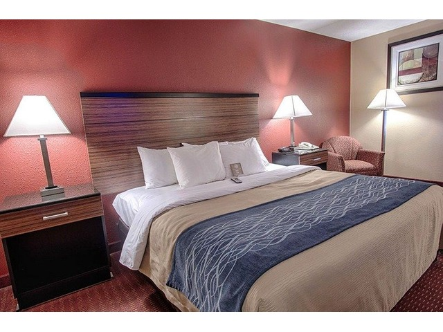Book Best Family Hotel Rooms in Maryland | Comfort Inn | free-classifieds-usa.com