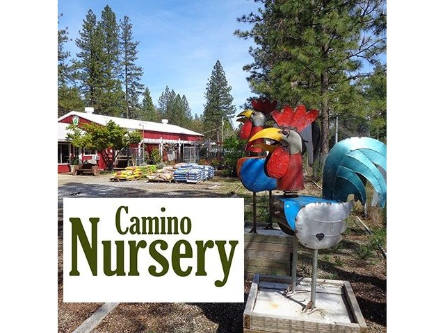 Plant Nursery For Or Lease