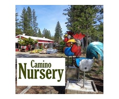 Plant Nursery For Sale or Lease