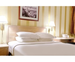 Find Offers On Booking Best Hotels In Arizona Travelodge (USA)