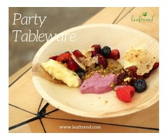 Party Tableware Set