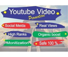 I will do Youtube Video Organic Promotion