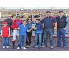 Karl Pergola - Passion For Horse Race