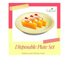 Round Disposable Dinnerware for outdoor party (100 Plate)
