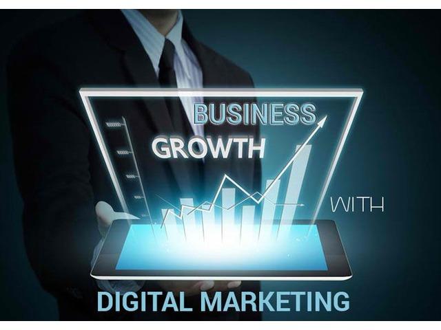 Choose the Professional Digital Marketing Company Florida to