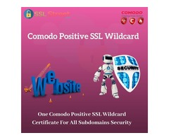 Buy Comodo Positive SSL Wildcard Certificate At Cheapest Price
