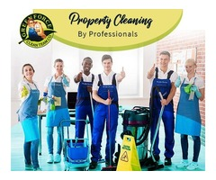 Now Clean Your House with the skilled Greenforce Cleaners