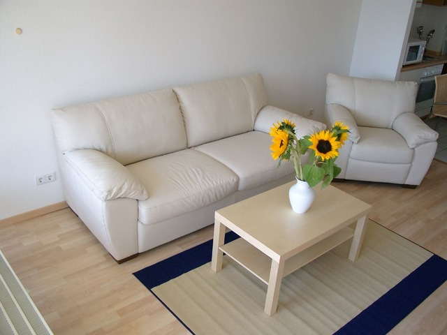 Nice finished apartment Berlin Center (Germany) | free-classifieds-usa.com