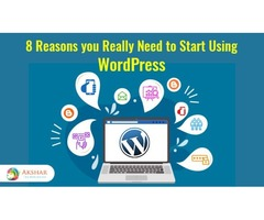 Get your WordPress Website Developed