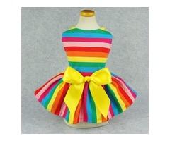 Rainbow Dog Dress