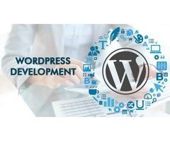 PX Media – Wordpress Development Company