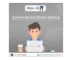 Best SAP HCM Success Factors Online Training