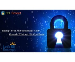 Encrypt Your Data With Wildcard SSL Certificates