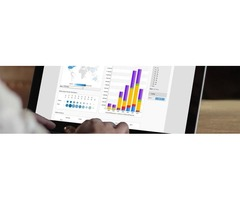 Business Intelligence Solutions - BizAcuity