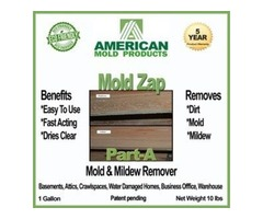 Environmentally Safe Mold Removal & Prevention Products: We Are GREEN !