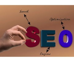 12 Step How to SEO Your New Domain Blog/website | Web Cures