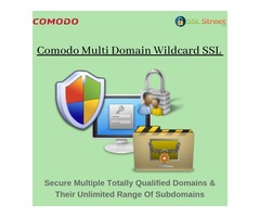 Comodo Multi Domain Wildcard SSL Certificate With 256 bit Encryption